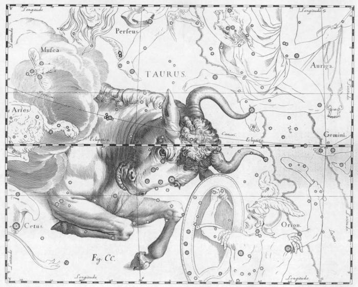 Taurus_by_Johannes_Hevelius