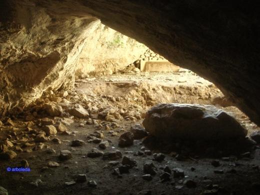 Cueva 8_lzn