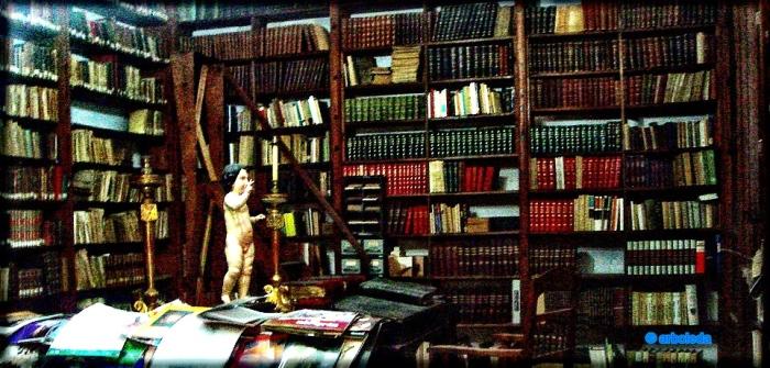 biblioteca santo domingo_lznNew