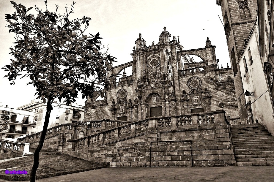 catedral 24_lznNew
