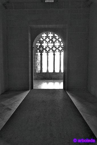 claustro 4_lzn