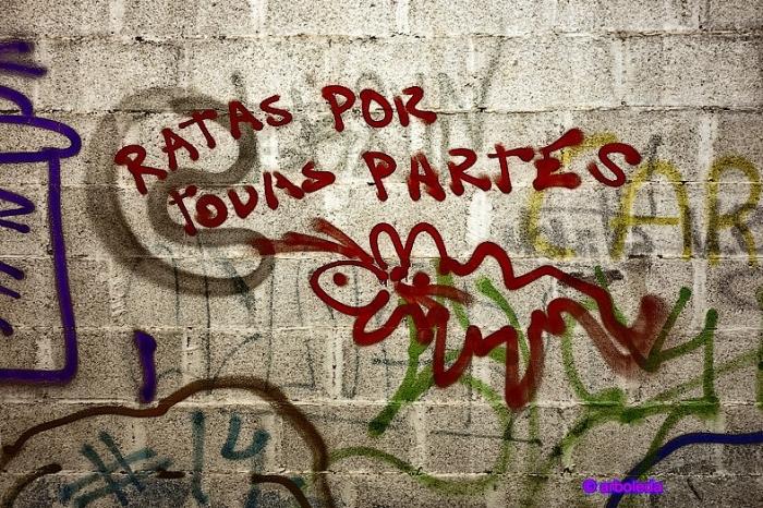 5 SEIS DE ENERO 2016_lzn