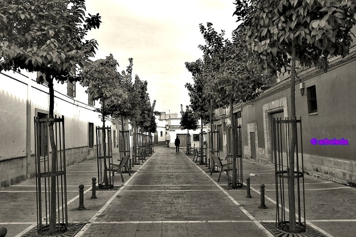 Albarizuela_lznNew