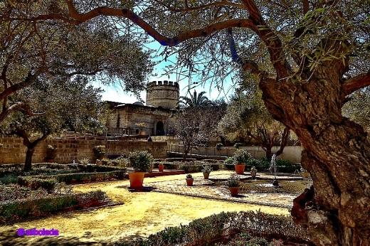 parque alcázar_lznNew