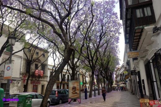 calle-del-amor_lzn